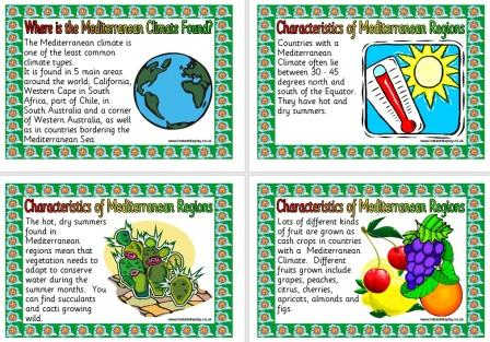 Free printable Mediterranean Climate Geography Teaching Resource