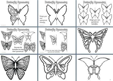 Free Printable Maths Symmetry posters - Butterfly Symmetry worksheets