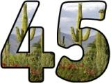 Free printable instant display digital lettering sets with a desert cactus background.
