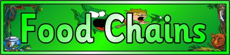 Food Chains Banner