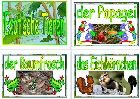 Free Printable German Exotic Animals Vocabulary Cards