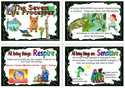 Free Printable Science Resource Seven Life Processes