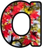 Printable Autumn Maple Tree Classroom Display Lettering Sets
