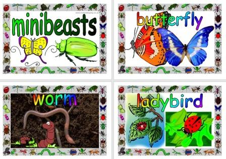 Free Simple Minibeasts Posters