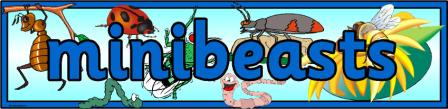minibeasts banner