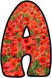 Poppies printable display lettering sets