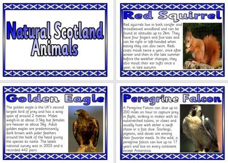 Free Natural Scotland Scottish Animals Information Posters