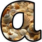 Free printable sea shell lettering for classroom bulletin board display.