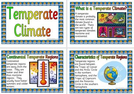 Free Printable Temperate Climate Information Posters For Geography Classroom DIsplay
