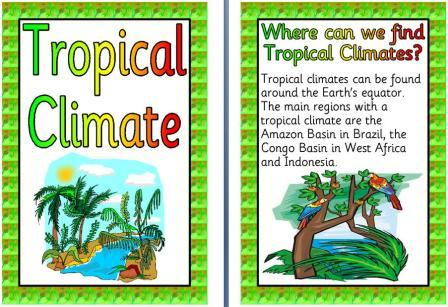 Free Printable Tropical Climate Posters Display Set
