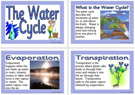 Free Printable Water Cycle Posters